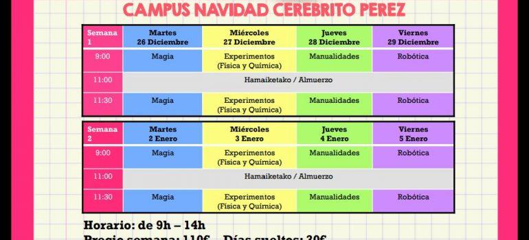 Campus de Navidad en Algorta - Getxo