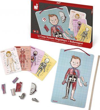 juego cuepro humano magnetico janod niños