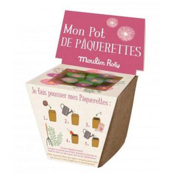 Maceta de semillas de margarita de Moulin Roty