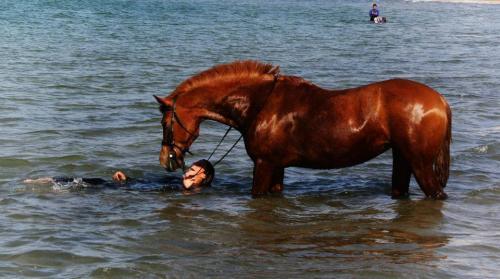 Pampa y Lorena en el mar